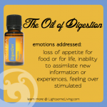 Emotional Healing & Essential Oils: DigestZen