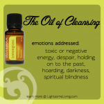 Emotional Healing & Essential Oils: Lemongrass